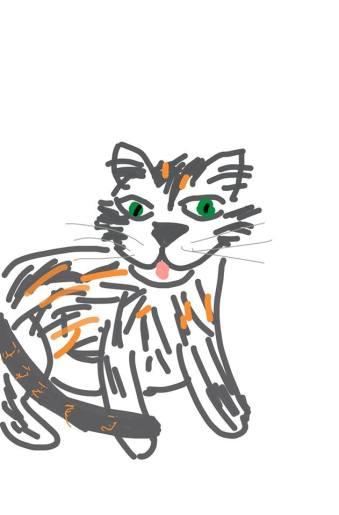Stella kitty!